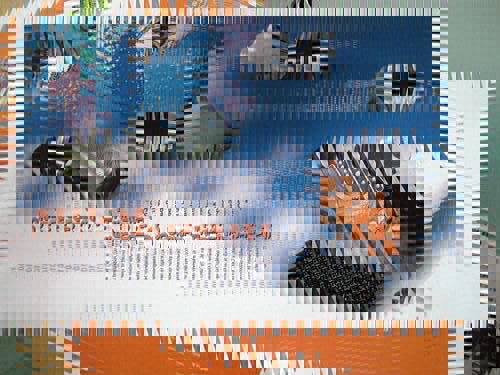 20120218-085245.jpg